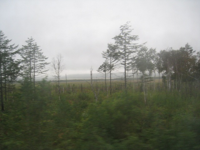 サハリン鉄道 (3).JPG