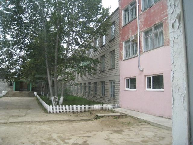 ノグリギの小学校1 (4).JPG