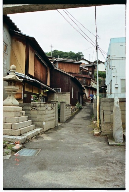 男木島08年6月21日 (12).jpg