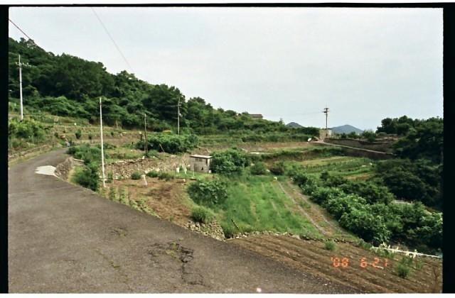 男木島08年6月21日 (28).jpg
